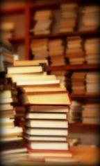 Os livros e o processo